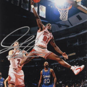 Verified Insignia Authentic Autographed Chicago Bulls Dennis Rodman Photo